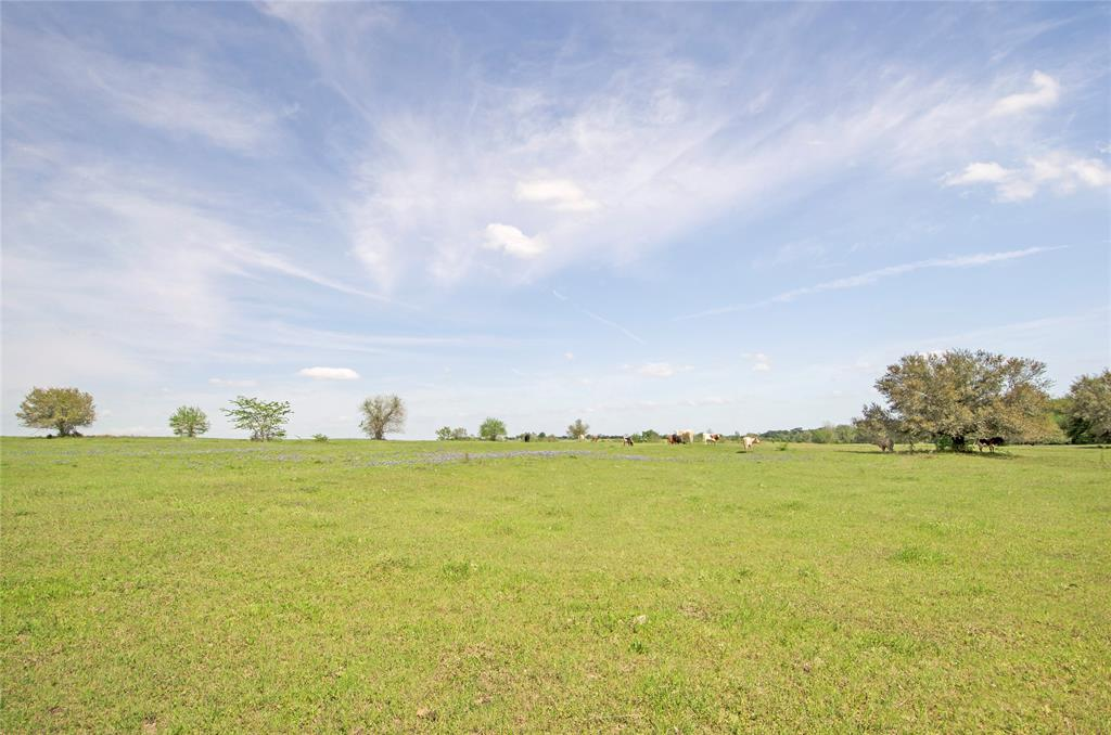 Beautiful property with rolling elevations just waiting for your country home! Approximately 17.5 acres with electricity already on the property. Kuykendall Creek runs along the rear boundary line. Ag exemption is in place. Conveniently located with easy access to both Brenham and College Station.  **Other tracts available**