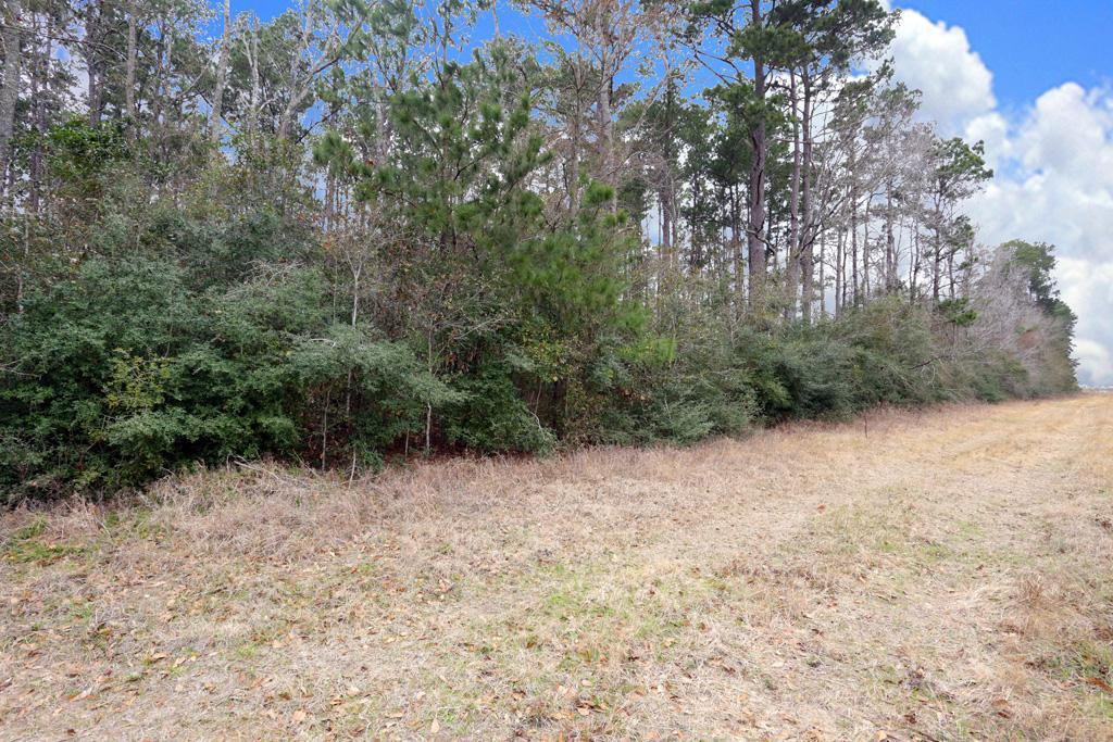 This is a tremendous opportunity for residential or commercial development. This property can be combined with A 0467 Reynolds George, Tract 2-A 18.190 acres, 33635 Dobbin Huffsmith Road 2.5086 acres and 33615 Dobbin Huffsmith Road 8.392 acres to come up with almost 50 acres with frontage access off Dobbin Huffsmith Road. Large mature trees, relatively level terrain with extremely low taxes. Just minutes from The Woodlands