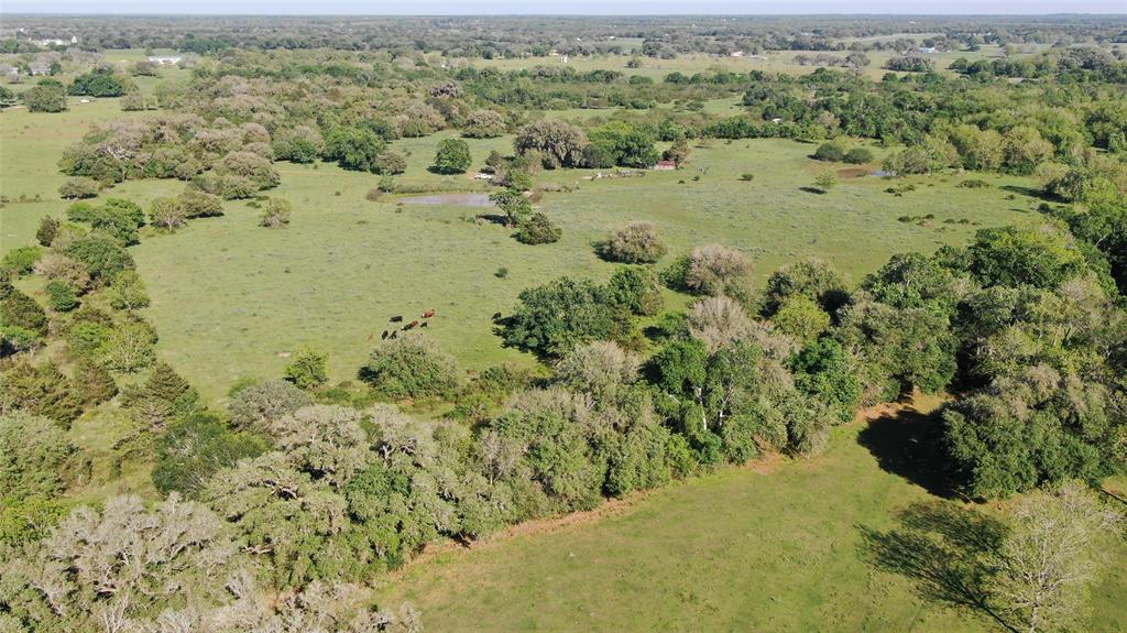 BEAUTIFUL 49 acres full of mature Oak trees, two ponds, rolling hills and the Rickaway Branch of the Lavaca River winding along the edge of the property.  This beautiful tract of land would be a great place to call home or a hunting/getaway retreat for the weekends and/or holidays with family and friends.  Great pastures for cattle!  The property has electricity available, a water well and a septic system.  All of this within 2 hours of Austin, Houston or San Antonio.  You have got to see this property!  Contact the listing agent to see the property or to answer any questions.