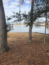 164 Weeping Willow, Livingston, TX, 77351