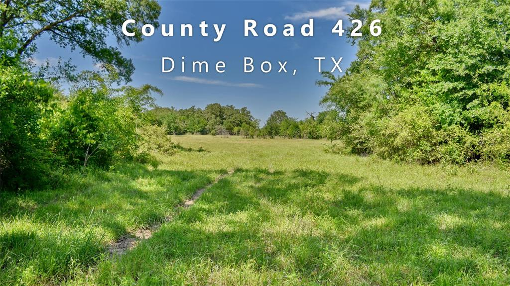 +/- 75-Acre unimproved, raw land located off of the quiet, paved County Road 426 in Dime Box. Approx. 1,100 ft of road frontage with a gravel driveway into the property. 70 Miles to Austin; 100 Miles to Houston; 130 Miles to San Antonio. Partially wooded, partially open pastureland and fertile bottom-land for livestock grazing or potential cultivation, over 70 feet of sloped elevation change with a high hilltop on the south end of the property. Hilltop views are breathtaking! Sandy loam topsoil and gravelly sand and rocky shale range throughout. Native hardwood and soft wood trees. Current use is livestock grazing, recreational, whitetail deer and feral hog hunting. Two stock ponds on-site and seasonal Brushy Creek runs through the property bringing an abundance of wildlife. Partial 100-year Floodplain located around Brushy Creek. Three-Phase Electricity by Bluebonnet Cooperative is available on-site. Water well and septic are needed.