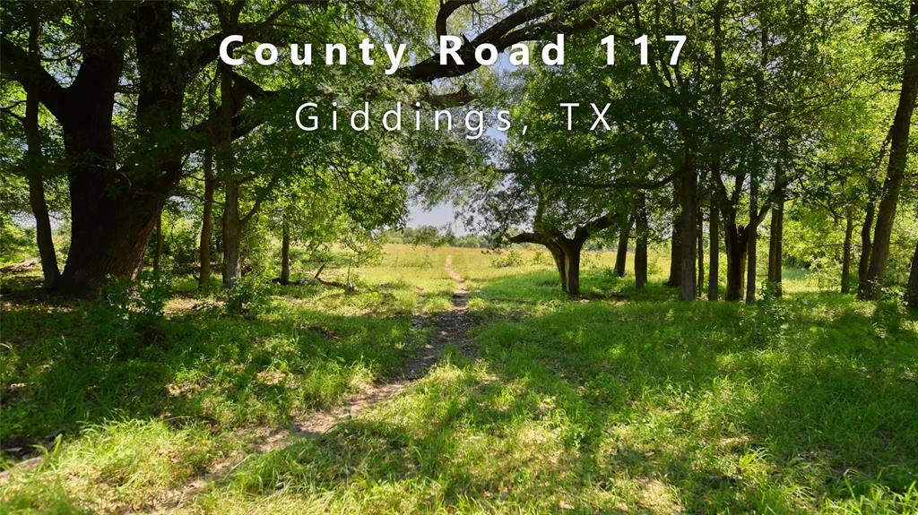 140+ Acre Property conveniently located off of County Road 117, just 6 miles outside Giddings, TX. Approx. 1,563 ft of road frontage with double pipe gates and gravel entrance into the property. 62 Miles to Austin; 108 Miles to Houston; 125 Miles to San Antonio. Mostly wooded property that was partitioned out of a 560+ acre family Ranch. Features include open pastureland & creek bottom-land for livestock grazing, over 60 feet of various elevation change. Sandy loam topsoil % gravelly sand range throughout. Current use is livestock grazing, recreational, whitetail deer and ferrel hog hunting. Nails Creek runs year-round through the property & Persimmon Branch seasonally flowing into Nails Creek. These natural water sources bring an abundance of wildlife to habitat. Near the south end is seasonal Wolf Branch creek. Partial 100-year Floodplain located around Nails Creek and through the middle of the property. Overhead Electricity is available along the frontage road.