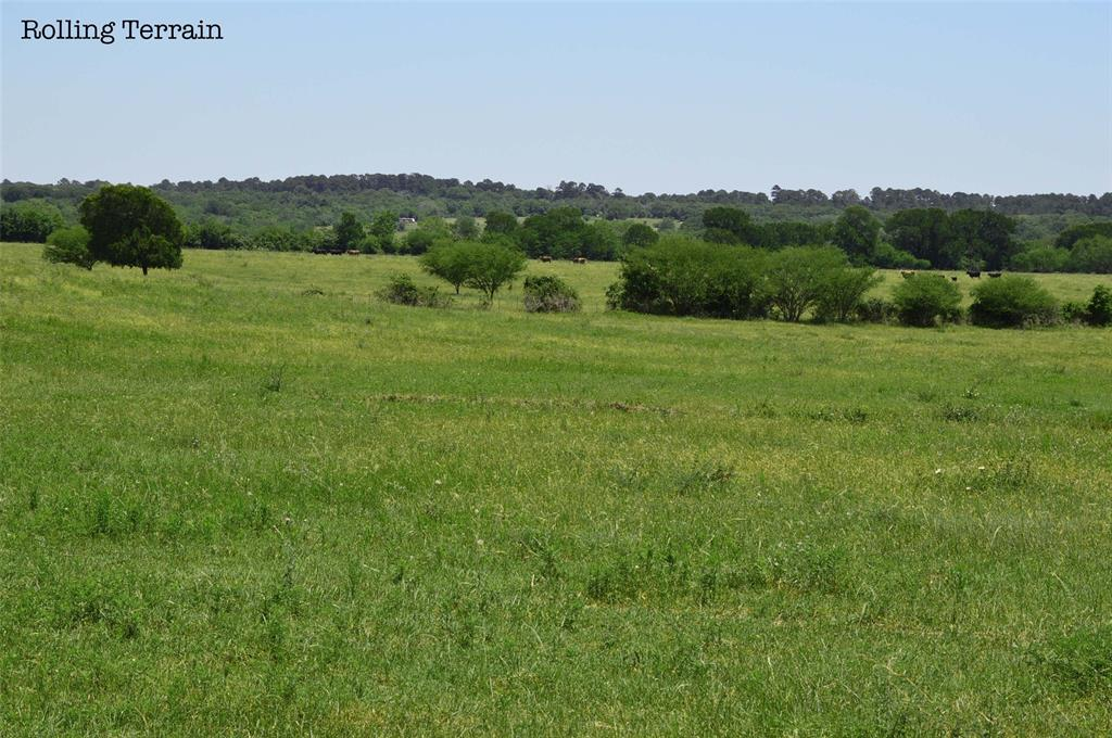 684.7 Acres located in the Heart of the Texas Triangle, (Tex-A-Plex )With the ever expanding growth in central Texas, Grimes County is a great place to invest. Take a look at the rare opportunity to own over a section of land, less than an hour from the Woodlands and 30 minutes from Texas A&M University. With rolling terrain, scattered oaks and a wet weather creek, this property lends itself well for future development. Currently a working cattle ranch with ample water sources and opportunity for hunting, fishing or just enjoying clean country living. A safe place to invest while enjoying the convenience of being 5 minutes from shopping or dining. In addition 4 ponds to here is a great lake-site. Property can be served by public water and or well water. Property is possible to divide into 130, 250 or 300 acres.