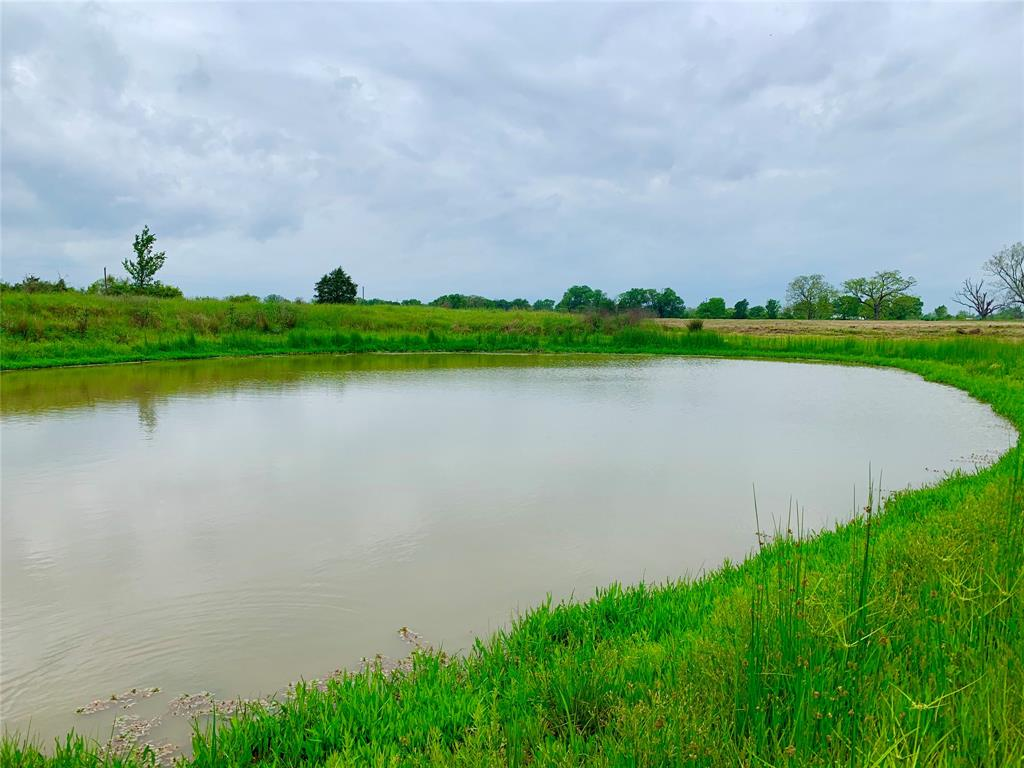 Beautiful +/- 12.5 acre tract featuring gorgeous mature trees and a small pond. Improved pasture perfect for your new home site! Lee County water available. Electricity available. AG exempt! Seller restrictions- No mobile or manufactured homes.