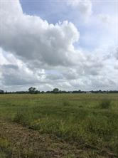 7017 County Road 100, Boling, TX 77420