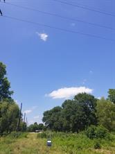 0000 N pine Road, Arcola, TX 77583