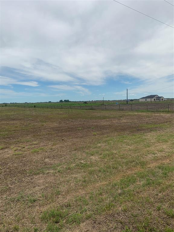 """Beautiful 10 acres to build your Dream Home or Place Manufacture, with minimal restrictions. Property is currently Ag exempt. The property is cleared. Great property for cattle or horses. Needs Septic system. Water well on property but missing pump, seller has no knowledge of its condition, property being sold """"as is"""". Land located outside the city limits. 30 miles from Bay City. Make an appointment today. Survey available."""