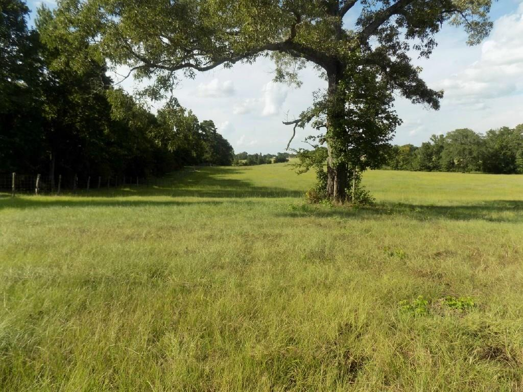 GORGEOUS HOME PLACE! 
