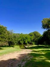 226 River Tree Drive, Blessing, TX 77419