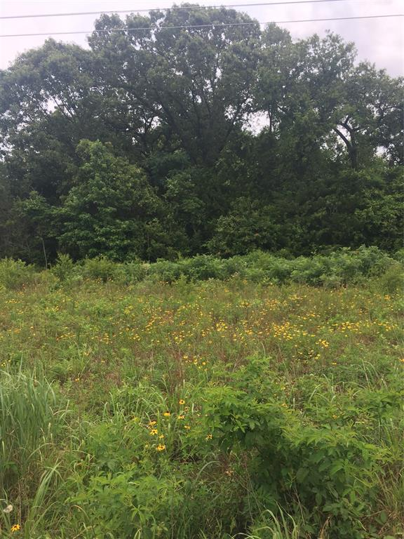 This unique property is one entire original survey, of Richard Pennington who came from Tennessee in the 1850s. 40.497 acres.   It would be great acreage for family farm, or homestead.  Lots of homesites with beautiful East Texas hardwoods and pines.  Was previously farmed and could be again because of the  good soils.  Hunting is good in the area with lots of deer and other wildlife.  Secluded and private but minutes from Grapeland.  1/4 of minerals to go with sale.  Located in Grapeland school district which boasts new High School and new Elementary School.  This property is a corner property, fronting two county roads.  Survey probided.