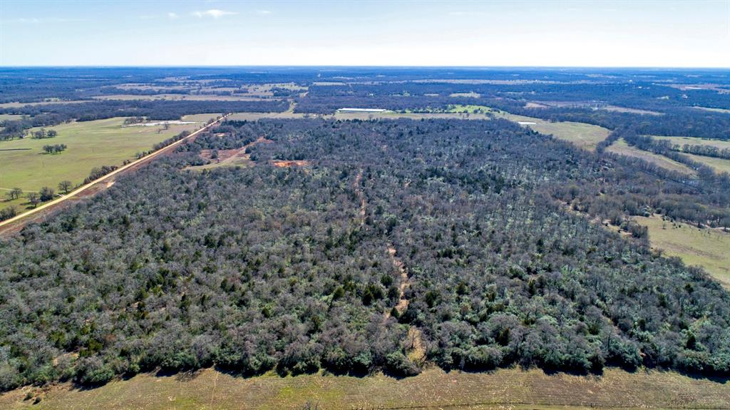 153 ACRES OF A BEAUTIFULLY SHAPED, UNTOUCHED WOODED PIECE OF LAND. FENCED PARAMETER, APPROXIMATELY 2600 FEET OF ROAD FRONTAGE ON COUNTY ROAD 302. ELECTRIC AND RURAL WATER CLOSE BY.  EASILY DIVIDABLE FOR BIG HOMESITES.  ONE BODY OF WATER ON LAND AS WELL. LOCATED IN BETWEEN AUSTIN & COLLEGE STATION. 