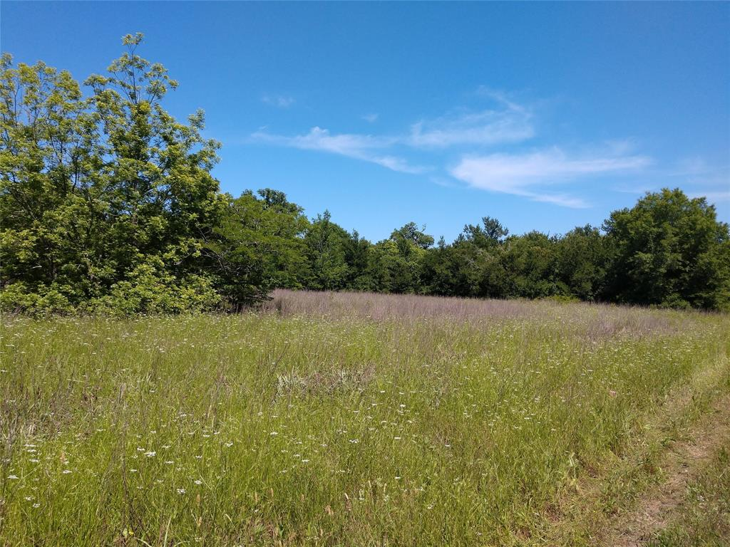 This 13.84 acre wooded lot backs up to the Navasota River and is just a short drive from Bryan. It is a perfect getaway to enjoy peace and quiet and abundant wildlife. Camping, hunting, relaxing, or just enjoying some time away!