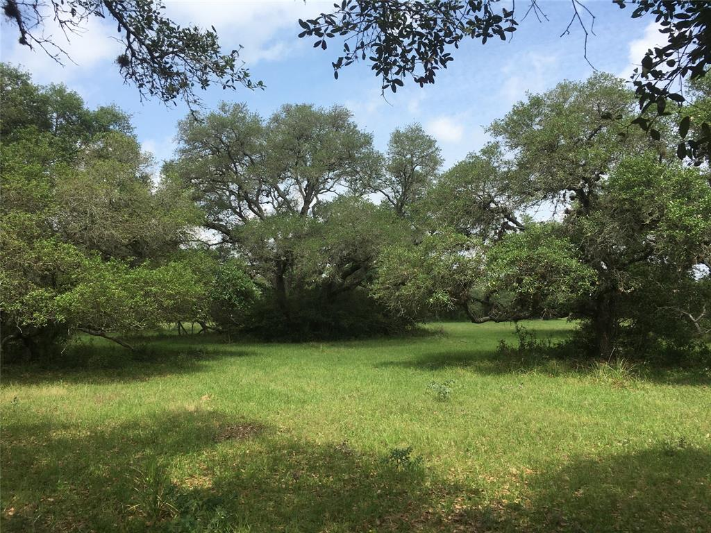 """NOT in the Flood Plain!  Did not Flood. Beautiful mushrooms for your fairy garden await.   Across these 7 acres are scattered hither, there and yon are the bouquets of live oak trees.  Peaceful country life starts here surrounded by nature, which is acting as a privacy screen, all around the parcels located along private road, """"Jessica's Way"""" entrance.  The perimeter is partially fenced.  The land holds a current agricultural valuation.  This is the small tract that you have been looking for.  Only 5 minutes away from gas and a gallon of milk;-) The land is on the south side of private road, """"Jessica Drive"""", (pending completion). Tax ID 31019"""