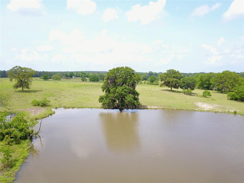 Looking for a place to build your permanent home or weekend getaway within close proximity to Lake Livingston? Well look no further! This 163 acre tract is perfect for those that are looking for a turnkey ranching setup. New netwire perimeter and cross fencing, barns, cattle pens, electricity, and water well are just waiting for your cattle. Being only 6.5 miles from the lake, you can easily be on the water in 15 minutes or wet a line in one of the 5 ponds that are stocked with bass, crappie and catfish as well as access to Fountain Creek. The property is bordered by large timber company owned tracts which produces numerous trophy whitetail bucks every year and includes 35 acres of untouched hardwoods across Fountain Creek. You will not find a more Ready To Go setup, with more than a half a mile Farm To Market road frontage and within a 10 minute drive to Lake Livingston than this one. Contact us for more information!