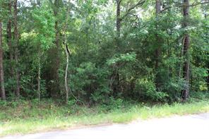 TBD County Road 3709, Splendora TX 77372