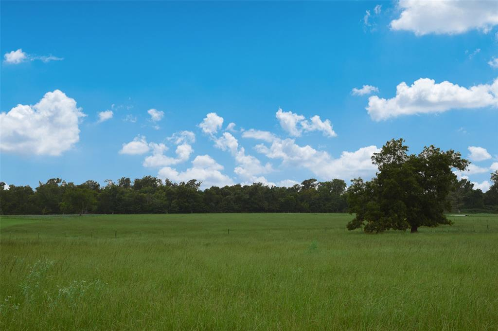49.98+/- acres of rolling terrain, being split into three tracts. 17.5 Ac and 15+/- Ac scattered hardwoods, each tract will have excellent road frontage on CR 185. All have access to public water and easy access to power. Located within 5 minutes from Anderson, thirty minutes from Bryan/College Station and forty-five minutes to Madisonville and I-45, this tract offers an opportunity to own Ag exempt property within minutes of city conveniences. 17.5 acres adjoining the 32.48 acres is currently pending. Pictures show all three tracts.