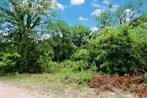 000 County Road 1052, Wiergate, TX 75977
