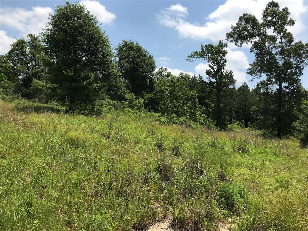 Ready to build your home away from the big city?  Now is your chance!!  This beautiful lot is horse and livestock friendly. Minutes from the National Forest, Lake Livingston and the Trinity River.