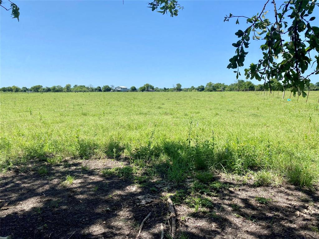 This lovely 14 acre tract is centrally located in the desirable Whitehall area on CR-316 between Montgomery and College Station. Peaceful country atmosphere with a very short commute to amenities.  Easy access to Houston, Conroe or College Station with the the Aggie Highway coming a few miles from this property.  The property is cleared and currently holds an agricultural exemption resulting in very low taxes.  Plenty of places to build and electricity is located across CR-316 for easy access.    The adjoining 17.27 acre and 12.74 acre tracts are also available.  Ask listing agent for details.