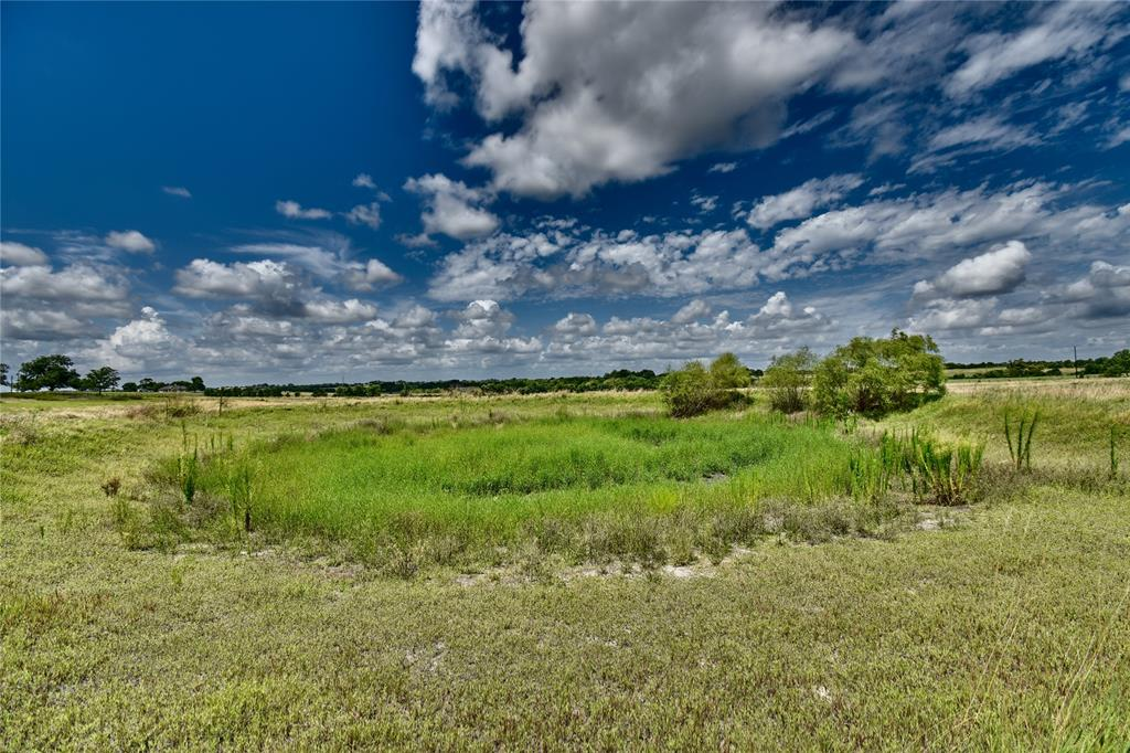 Approximately 21.86 Acres of tree lined frontage, rolling hills, located a short distance off of US Hwy 290 W and TX-237 S, on Century Farms Rd (also known as County Rd 4), fenced.