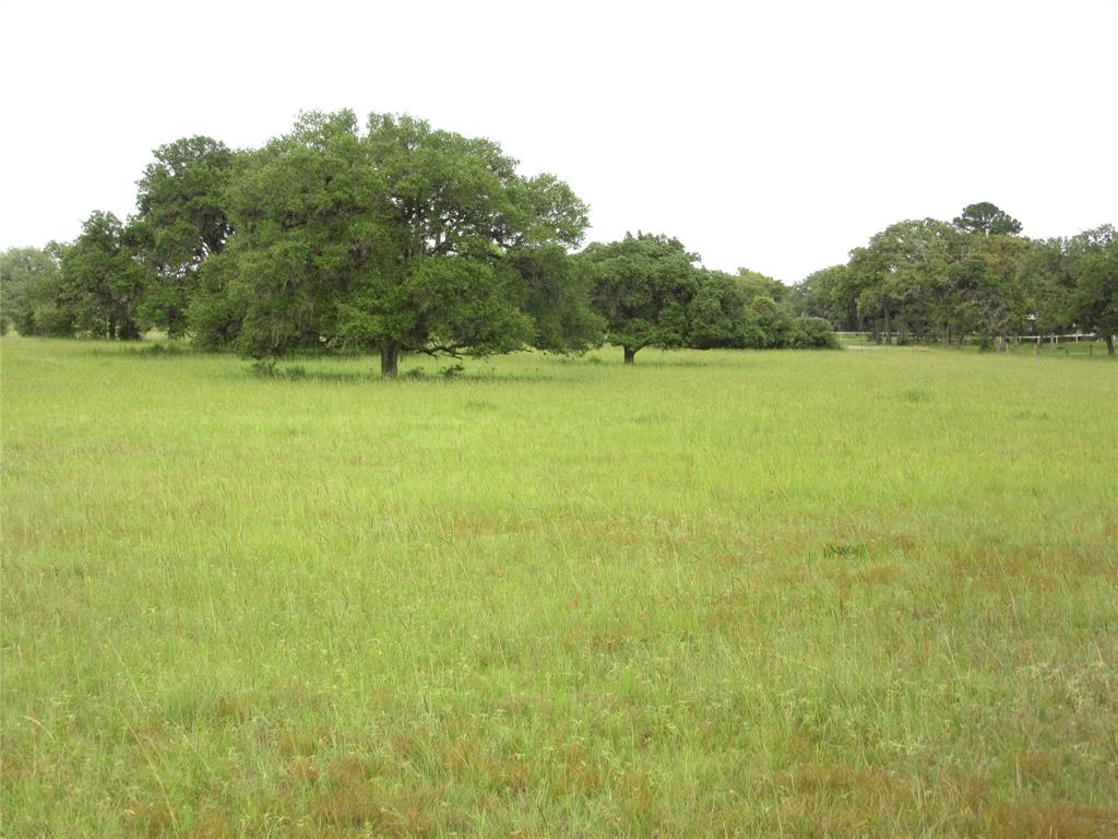 A wonderful tract of land just south of Sheridan off FM 2437 and real close to the water park on Hwy. 90.  This tract was split by heirs and was 35.0 acres and one heir is selling her part.  Has plenty of road frontage and with large live oaks, scrub oaks, post oaks and other hardwoods.  Has about 75 trees and has several live oaks that are over 100 years old.  Most of trees up front and pasture in the back with large live oaks trees. Seller has some minerals and will convey some.  This is great investment property for a RV park for MH's, small cabins and real close to water park. Come see this great property in sheridan Texas in Colorado County.