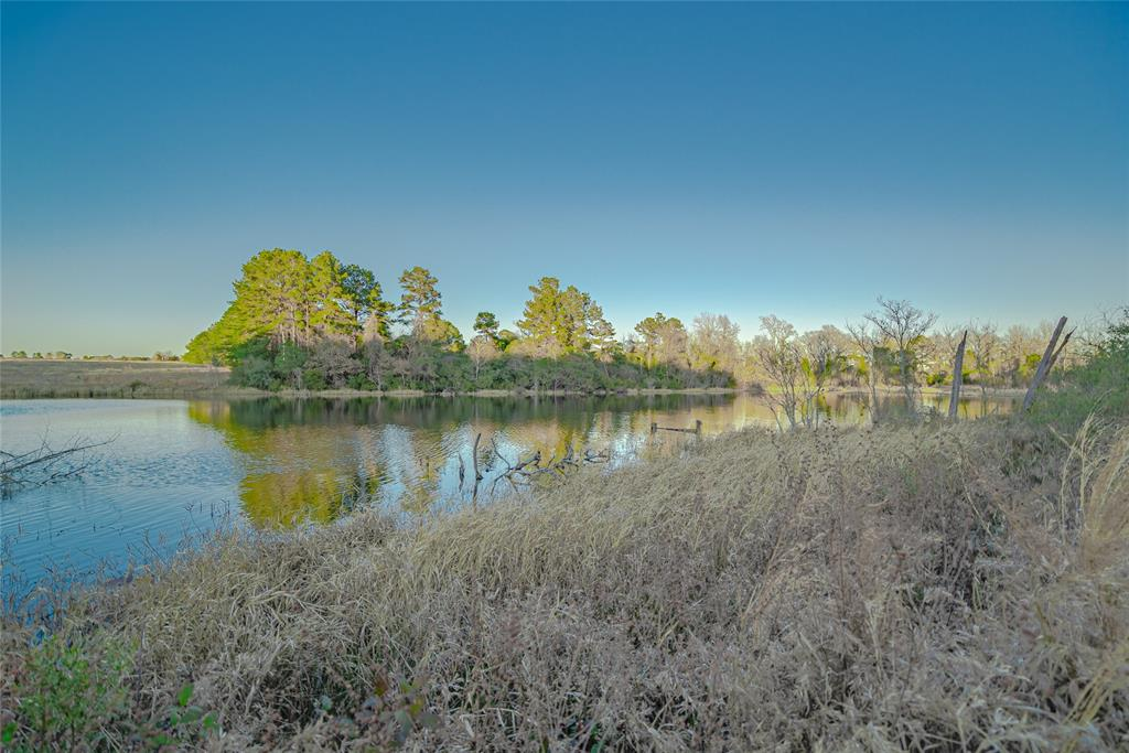 Come see this beautiful country property located in Grapeland! This property is 51 acres and unrestricted. Acreage is partially wooded with a pond that totals approx. 1 acre. There is also a large portion of the acreage that has been cleared and is ready for you to build your dream home on. Property is perfect for horses and cattle as well. Schedule a showing today!