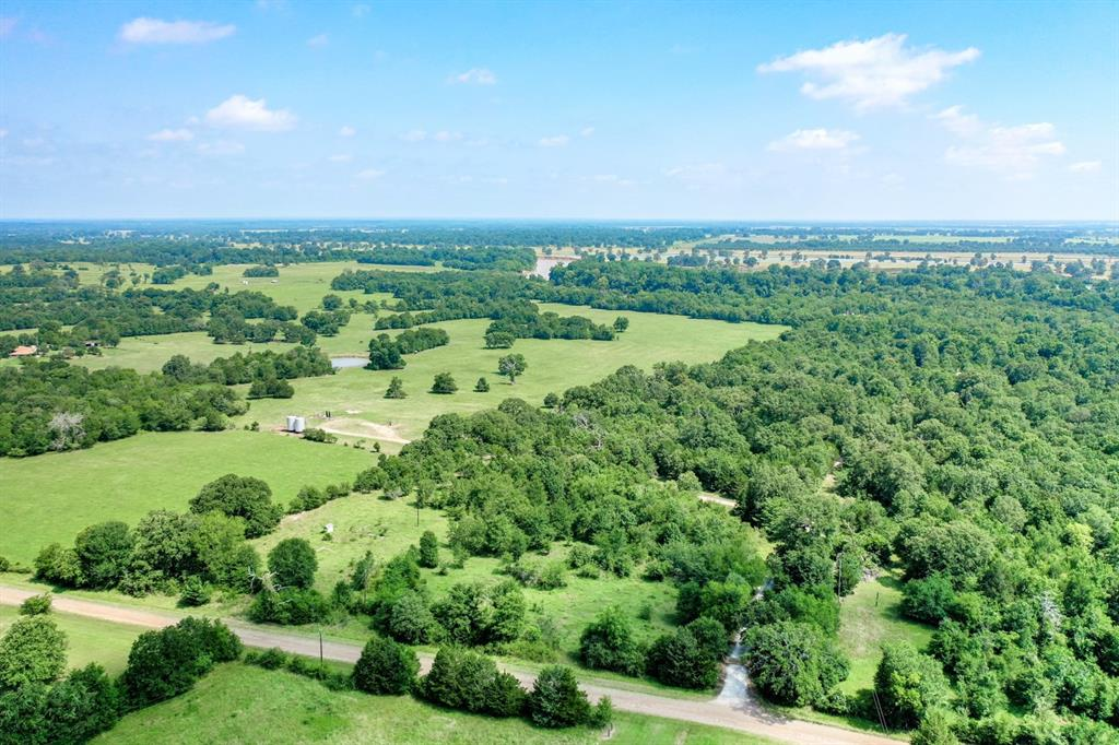Welcome to the Bradley Estate located in Northeastern Madison County, approximately 10 minutes from I-45 with easy access onto Hwy 21 East.  Beautiful 35 +/- Acres with Trinity River Frontage presenting approximately 50% open, 50% wooded with several mature trees including native Pecan.  Make this your residence or year-round recreational getaway.  Currently used for hunting and cattle, this property already has an agriculture exemption in place.  Fish directly off of your land in the Trinity River or launch your boat from the public access ramp just minutes away on Hwy 21 East.