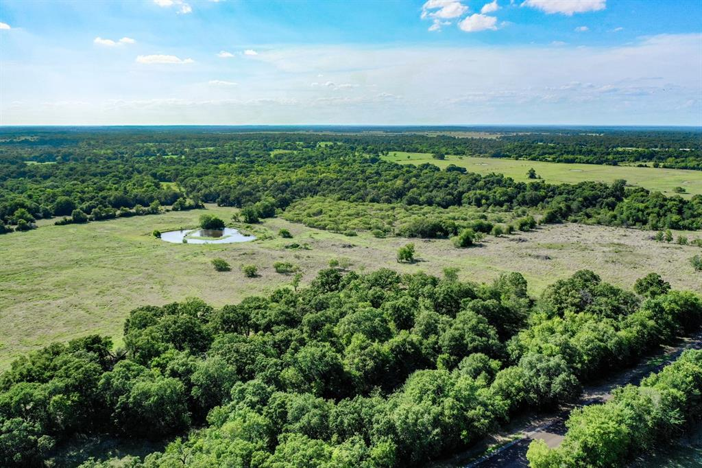 14+/- Private Acres are ideal for building your dream home! Mature oaks hide your future resting place from the paved FM 3060 in Madison County.  Have you been looking for that perfect tract for your livestock, home, and hunting habits?  This land features a nice fishing pond near the back that draws the wildlife, and satisfies the cows if they need a refreshing drink. You'll love sitting on the back porch watching the sunset while the deer and baby calves frolic about.  Take a walk and dip your line for a tasty bass for dinner.  The possibilities on this conveniently located parcel are endless. The fertile pasture and green foliage complete most land hunters dreams, so come look today and let's get started building your tomorrow!
