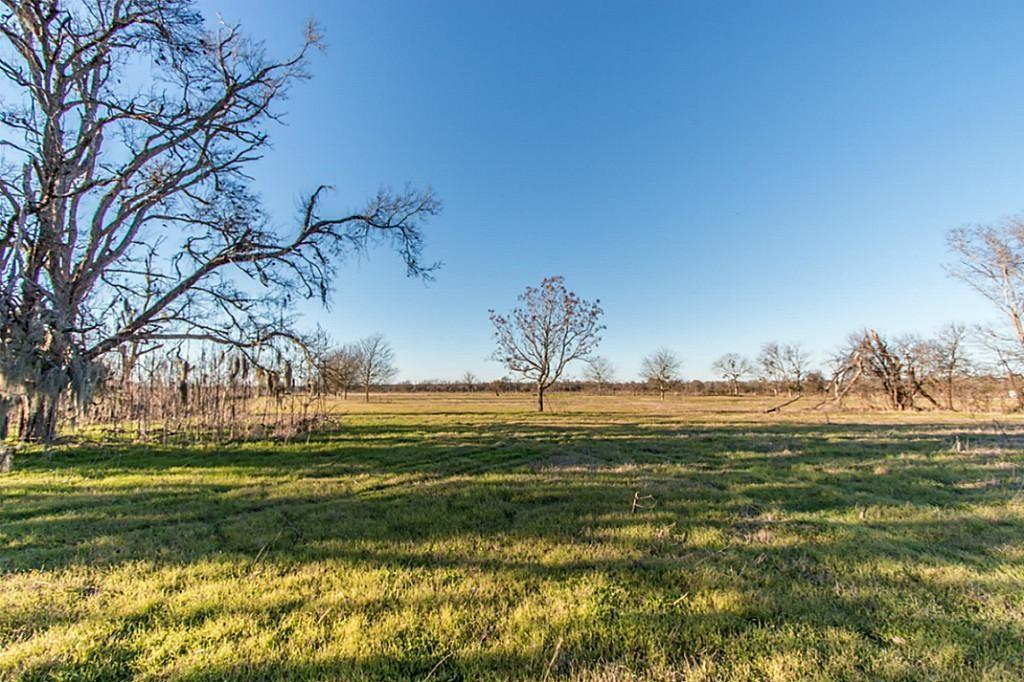 Beautiful River Property waiting for your vision.  This diamond in the rough has 850 foot of Brazos River frontage.  It will make a great escape from city life with Hunting and Fishing all in one place waiting for you.  Property will support Horses and Cows.  There is an existing live stock well already set up for this use. There is electrical and phone already on the property helping to minimize additional costs.  Deer and Hogs love this property and are known to be seen all over during hunting season.  Call today to own your own piece of TEXAS!