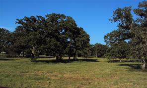 TBD Blacksmith Farm Lane, Weimar, TX 78962