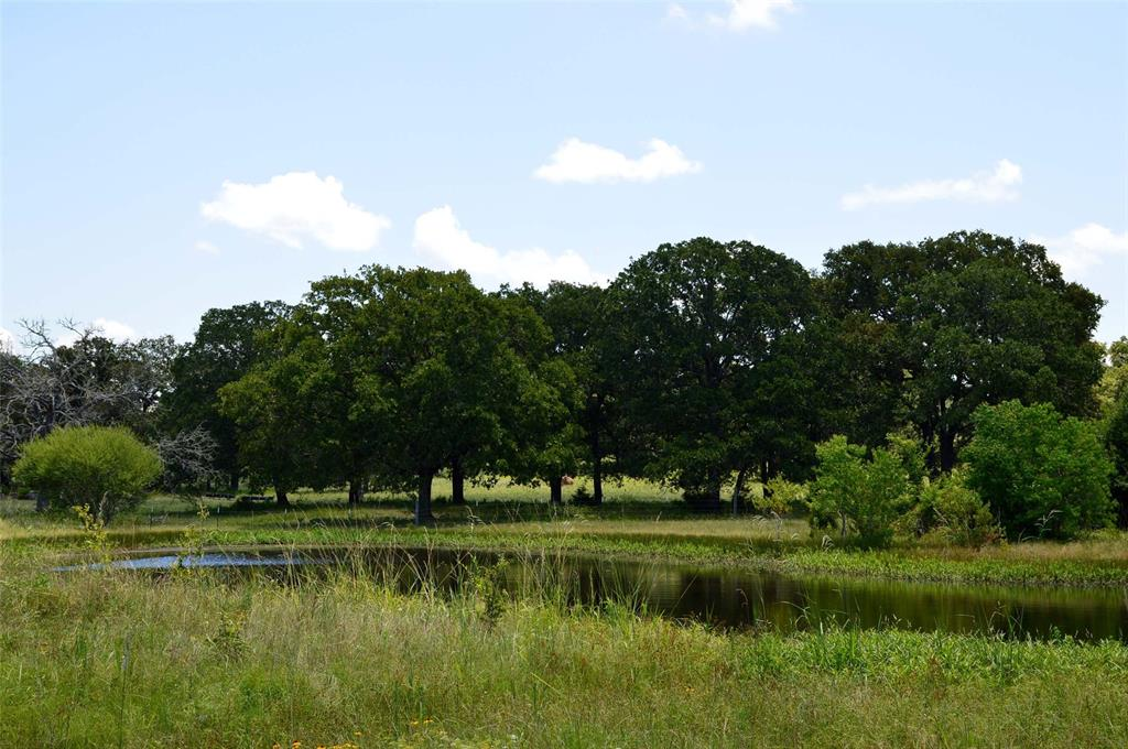 8.4 acres of unrestricted property located at the edge of Navasota, only 30 minutes from Texas A&M, within an hour of Houston. Gated shared entrance, power on property, the road goes through the property splitting into two pieces. Central Texas is the place to be if you are looking for a safe long term investment. Enjoy clean fresh air, the serenity of starry skies at night, beautiful sunsets in the evenings and just plain old fashioned country living.