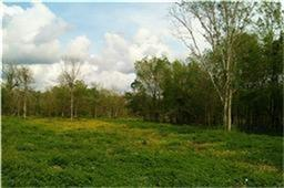 Approx 5 acres of land protected by Levee. 2 Entrances to the property. The property is right opposite to Riverstone - Taylor Morrison homes gated community New section. No sewer or Water. Unrestricted land.