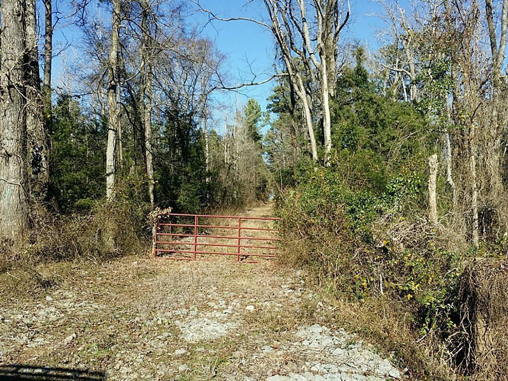 Rare find in East Texas, a large tract with MINERALS negotiable. Bring your recreational vehicles to this great tract that could be used for various activities including hunting, trail riding, camping, timber management, etc. The owner says this tract has been under timber management for a number of years. According to maps, Miles Creek crosses near the rear of the tract. There are no utilities on the property. Do not walk on property without calling the agent first, possible active hunting.