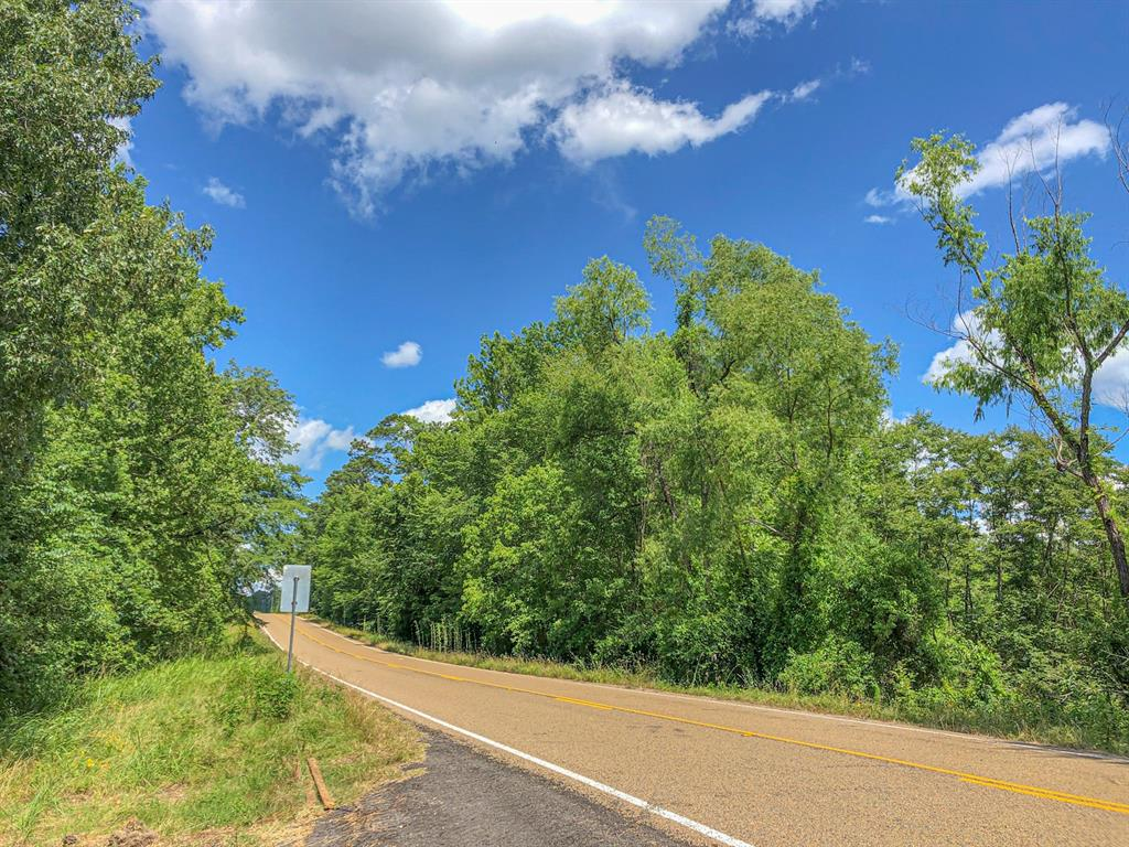 1st time open market offering. Historically used as industry forestland. Wooded in pine/hardwood mix allows you to shape to your desire. Gently sloping to sharply rolling topography is ideal for building, gardens, crops, and/or livestock. FM 1745/W Caney Loop frontage ensuring excellent access. Wooded in 2015 pine plantation bisected by hardwood stream-side management zones providing excellent drainage. Divisions available, as shown.
