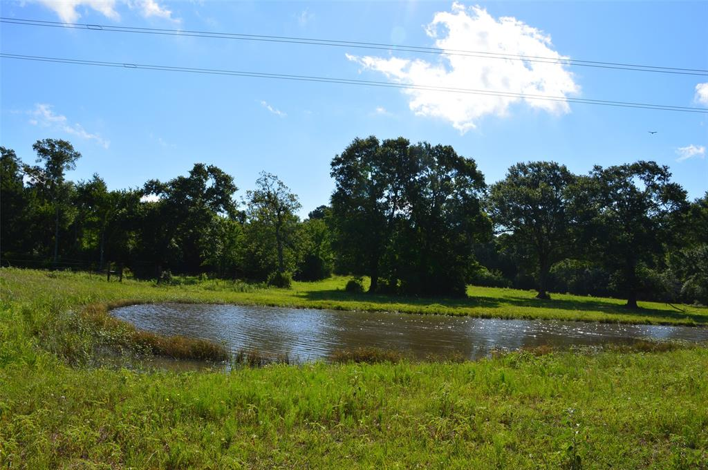 Unrestricted in Anderson ISD. Powerline does cross through the property. Proposed high speed train route is close. Survey required. Additional Acreage available.
