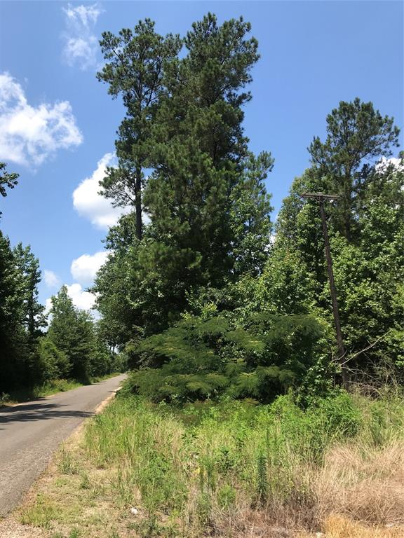 10.1 ac, heavily wooded tract in Liberty County. Northeast corner FM 787 and CR 2148. Survey available. about 45 mins from Houston