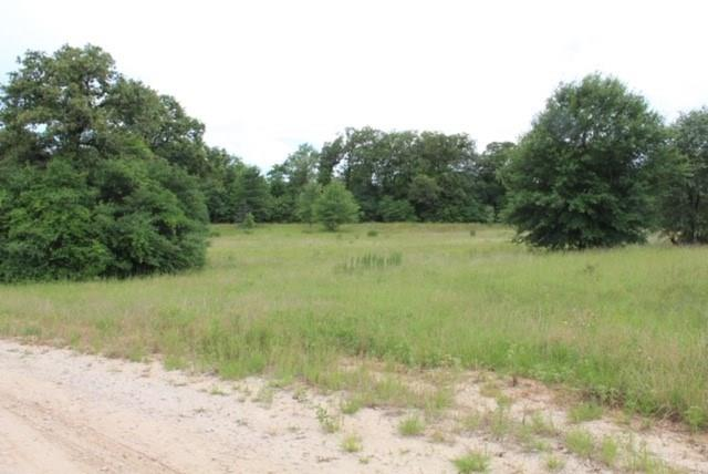 TBD County Road 336, Jewett, TX 75846