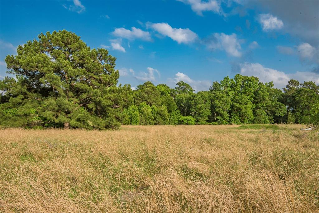 This 12.1 +/- acre tract is unrestricted, and ready for its new owners. Build your dream home here! With a thick woodline surrounding most of the property, and wide open pasture this tract is ready for fencing and livestock too.  The property adjoins the newer 4 Corners Subdivision featuring large tracts and custom homes. Call today to schedule your showing of this beautifully located piece of East Texas land.