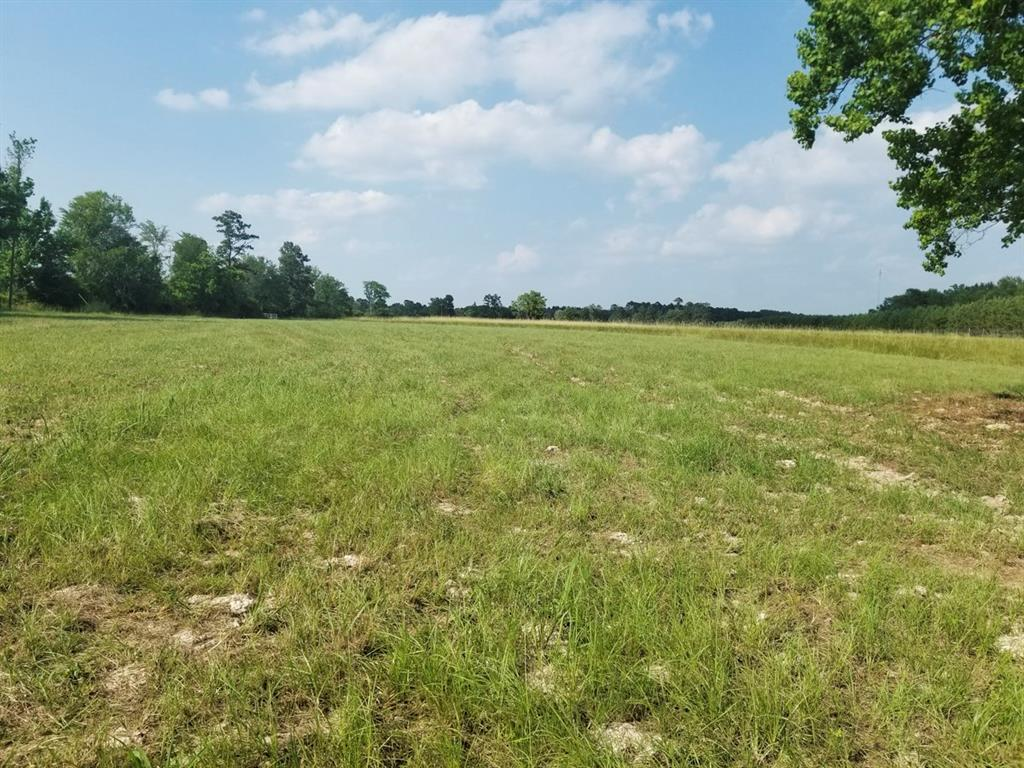 Small acreage close to town!!! Come and tour this prime 14+/- acres of pristine pastureland, with over 2,500 feet of FM 355 road frontage, the possibilities are endless. This tract is currently maintained for hay production.