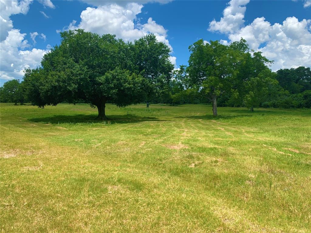 TBD Old Smithville Road, Flatonia, Texas 78941, ,Country Homes/acreage,For Sale,Old Smithville,37792088