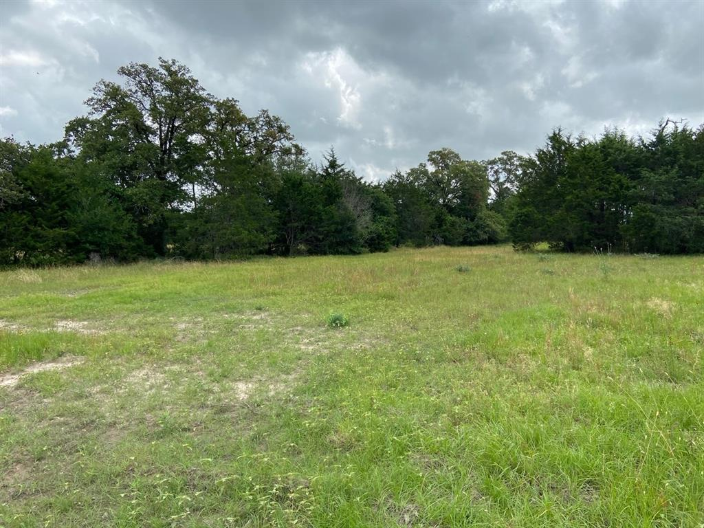 """3.461 acres with oak and cedar trees and good grass cover. Located on """"Ben Tap"""" Ln in Burton near Lake Somerville. Already has gravel and culvert in place, community water line and electric along front. This is an ideal quiet and pretty small acreage tract ready for your new house, lightly restricted. Enjoy all the good restaurants, taverns, festivals and shopping nearby in Burton or Round Top along with excellent fishing and water sports at Lake Somerville a few miles nearby. Seller is licensed broker in the State of Texas. No minerals to convey, seller will waive surface rights."""