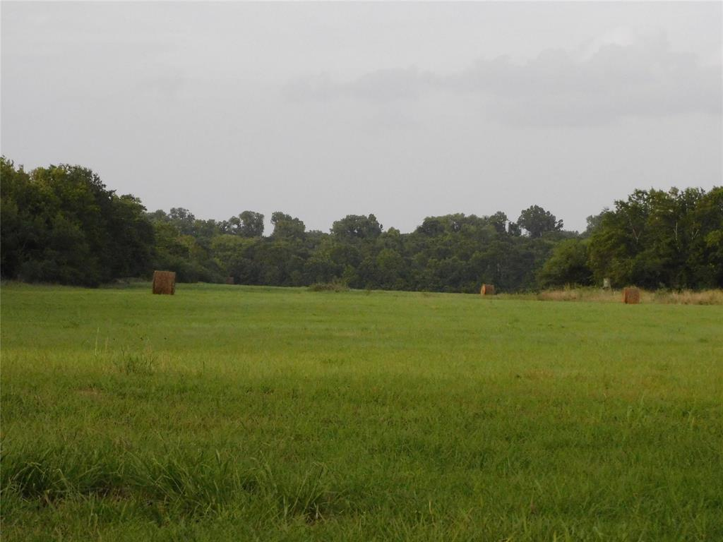 Mixed use, recreational hunting, productive hay pasture comprising of 48.94 acres in Austin County Texas.  The land has a variety of trees, small pond and large pasture providing a scenic setting as well as great potential for a homestead to raise your family.  This area is known for it's abundance of white wing dove, morning dove and quality deer.  The property is located in the productive Brazos River bottom and is close to the Stephen F. Austin State Park and museum.   Relocate permanently or find a rural retreat, this beautiful tract of land is worth taking a look at.