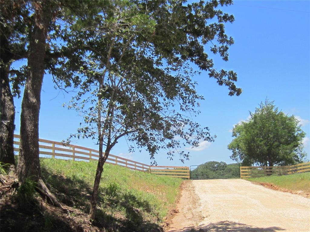 This is a beautiful country property with several nice building sites, located along a quiet country road, just down the road from historic Washington on the Brazos. 100+ year old Live Oaks, Elm, and Hickory trees shade much of the tract, along with a nice pasture as you enter from Pickens Road. The oldest oaks probably witnessed the Founding Fathers of our great state pass by as they convened to form the Republic of Texas just down the road at Washington on the Brazos. This is the perfect place to build a home or just to visit on the weekends. Details: New Fences around entire Perimeter     - Board Fencing along Pickens Road     - Five strand Barb Wire on other sides Spring Creek flows through Property Fronts paved Pickens Road Miles of Ranch Roads on Property Many Nature trails great for Exploring Rolling hills with 60 feet of elevation change Limestone Driveway Public Water available Located in Brenham ISD