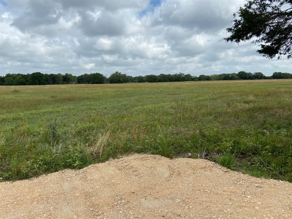 """3.965 acres with open views and good grass cover. Located on """"Ben Tap"""" Ln in Burton near Lake Somerville. Already has gravel and culvert in place, community water line and electric along front. This is an ideal quiet and pretty small acreage tract ready for your new house, lightly restricted. Enjoy all the good restaurants, taverns, festivals and shopping nearby in Burton or Round Top along with excellent fishing and water sports at Lake Somerville a few miles nearby. Seller is licensed broker in the State of Texas. No minerals to convey, seller will waive surface rights."""