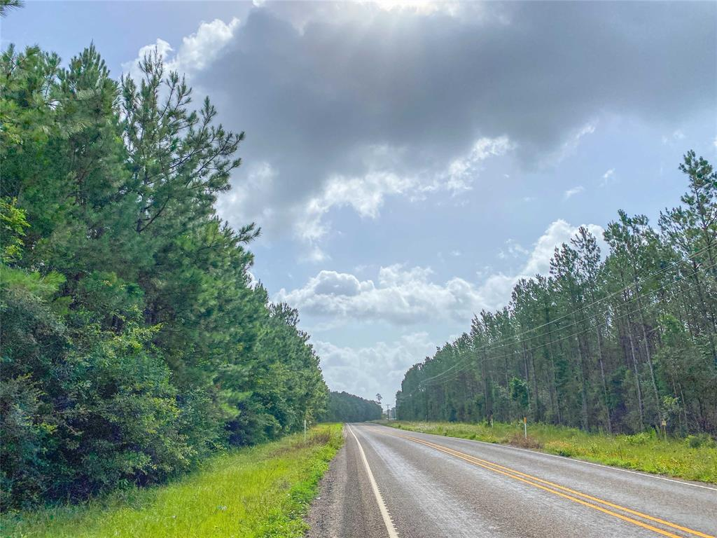 South Polk County! 1st time open market offering for this upland forested timberland. FM 943 frontage with possible additional accesses. East of US 59/I-69 with easy window. Large upland tract in growing area. The north end contains some well sites allowing for internal roads throughout the tract. Several possibilities for recreation, timberland investment, and/or development.