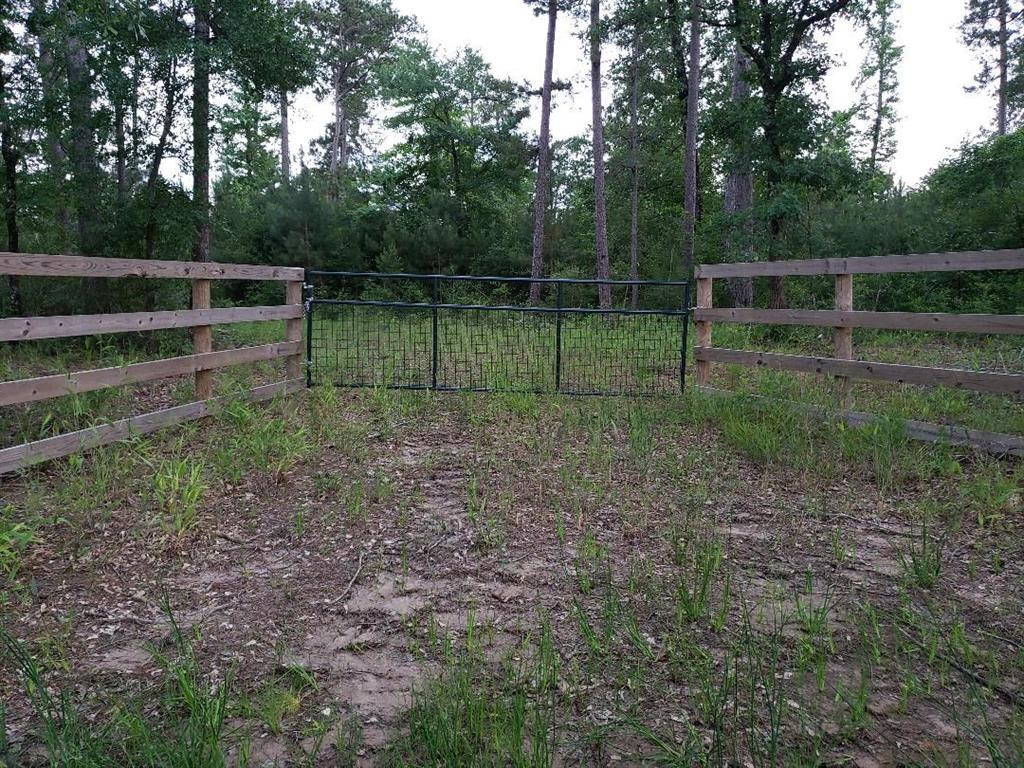 Imagine having 99 acres to escape the hustle and bustle, great hunting, timber and big sky. Water and electricity available. 1 hr. North of the Woodlands Texas. Beautiful building site or campground. Deer hunters dream.  Located just off Hwy 19 in Trinity Texas.