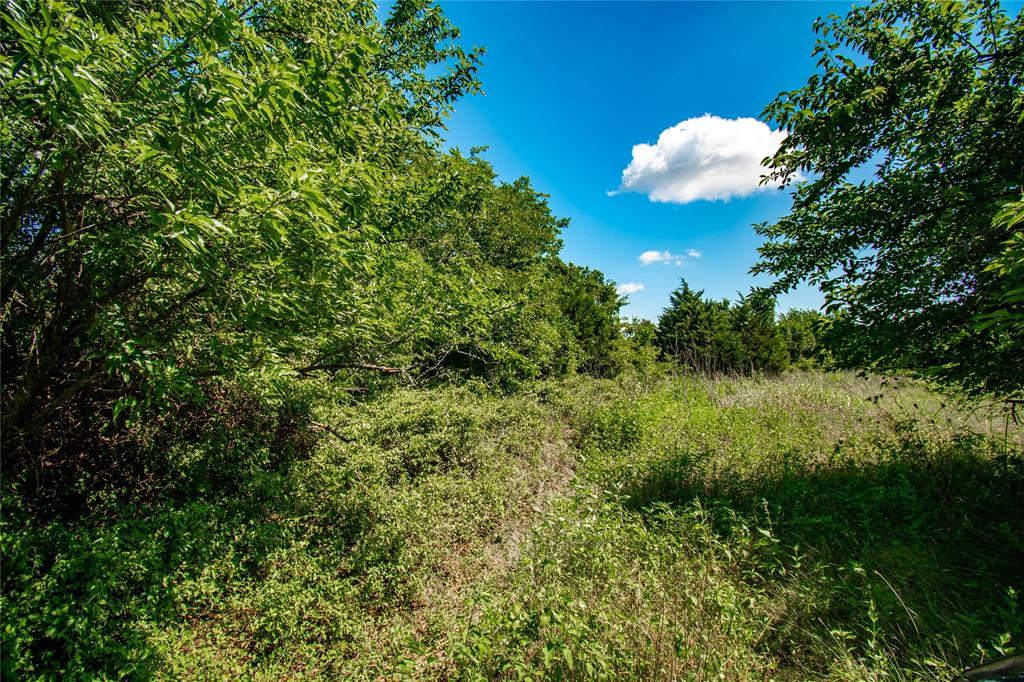 Beautiful rolling 11+ acres in Burton, TX. Many opportunities with this unrestricted land with a seasonal pond and improved pastures.  Highway 290 road frontage offers the prime locations for commerical yet still wooded and private enough for homestead. Easy access to town and local ammenities.