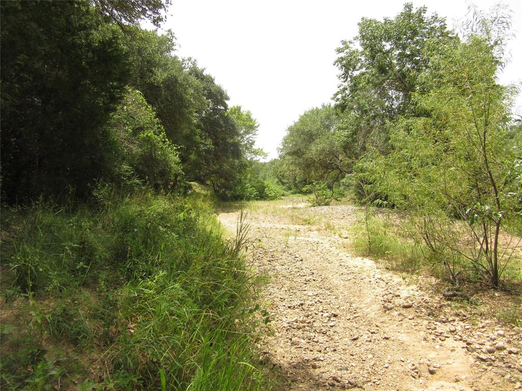 A great property in Colorado County(Columbus) Texas.  A property with many live oaks, spanish oaks, Post Oaks and other hardwoods.  Has 1250 feet of road frontage but no entrance, plenty of room to make your own entrance. Has 1630 ft. of Rocky Creek frontage on the back side of property.  Has 980 feet on east side from road to creek for a new fence.  Sellers have an Ag. Exemption and has a grazing lease. Seller has 100% minerals and will convey with good offer. Has no oil/gas production or leases. Great property for hunting with many deer and hogs. Property has elevation changes towards the creek and many great locations for building that house or cabin. Come see this great property and very secluded.
