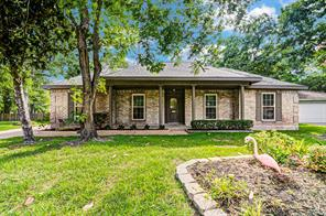 3506 Hill Springs Drive, Houston, TX 77345