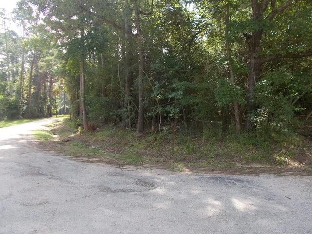 This lot is in the Golden Acres Subdivision located at the Houston County Lake. This lot is a corner lot with all utilities available! Do not miss out call us to see this property today!
